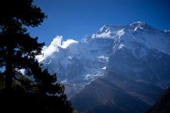 Αιχμή και δέντρα στα βουνά του Ιμαλαίαυ, περιοχή Annapurna, του Νεπάλ Στοκ Φωτογραφία