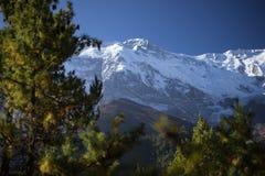 Αιχμή και δέντρα στα βουνά του Ιμαλαίαυ, περιοχή Annapurna, του Νεπάλ Στοκ φωτογραφία με δικαίωμα ελεύθερης χρήσης