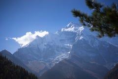 Αιχμή και δέντρα στα βουνά του Ιμαλαίαυ, περιοχή Annapurna, του Νεπάλ Στοκ Εικόνες