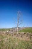 αιχμή περιοχής στοκ φωτογραφία με δικαίωμα ελεύθερης χρήσης