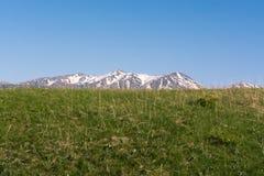 Αιχμή χιονιού του βουνού πράσινοι λόφοι Καλοκαίρι Ασυννέφιαστη ημέρα στοκ φωτογραφία με δικαίωμα ελεύθερης χρήσης
