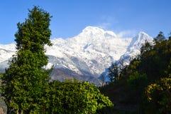 Αιχμή Annapurna Στοκ εικόνα με δικαίωμα ελεύθερης χρήσης