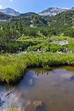 Αιχμή Chukar Banderishki, βουνό Pirin Στοκ Εικόνες