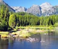 Αιχμή Pleso και Strbsky Strbske σε υψηλό Tatras Στοκ Εικόνα
