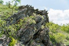 Αιχμηρά γαρμένα στρώματα βράχου που αποσπιούνται στην επιφάνεια Στοκ φωτογραφίες με δικαίωμα ελεύθερης χρήσης