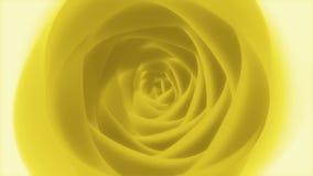 Αιώνιος Yellow Rose βρόχος υποβάθρου του //4k 60fps καλλιτεχνικός ποιητικός Floral τηλεοπτικός φιλμ μικρού μήκους