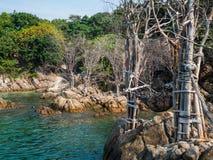 Αιώρα σχοινιών θαλασσίως στοκ φωτογραφίες