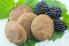 Ακέραια μπισκότα και φρέσκα βατόμουρα στα φύλλα βατόμουρων Στοκ Εικόνες