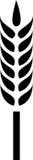 ακίδα αυτιών Στοκ εικόνα με δικαίωμα ελεύθερης χρήσης