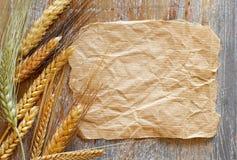 Ακίδες σιταριού και έγγραφο τεχνών Στοκ φωτογραφίες με δικαίωμα ελεύθερης χρήσης