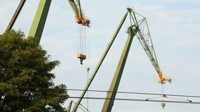 Ακίνητοι γερανοί οικοδόμησης ενάντια στο μπλε ουρανό, εργοτάξιο οικοδομής, βιομηχανική περιοχή απόθεμα βίντεο