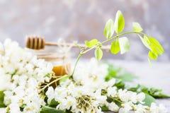 Ακακία και μέλι - ένα προϊόν θεραπείας στοκ φωτογραφία