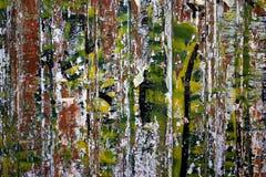 ακατάστατος τοίχος Στοκ Φωτογραφίες
