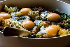Ακατέργαστα αυγά συστατικών που αναμιγνύονται με τα φρέσκα κρεμμύδια, το κρεμμύδι, το parlsey και το πιπέρι για την τουρκική συντ στοκ φωτογραφίες με δικαίωμα ελεύθερης χρήσης