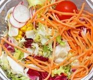 ακατέργαστα λαχανικά σα&lam Στοκ φωτογραφίες με δικαίωμα ελεύθερης χρήσης