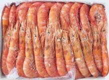 Ακατέργαστα θαλασσινά γαρίδων Στοκ φωτογραφίες με δικαίωμα ελεύθερης χρήσης