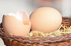 Ακατέργαστα καφετιά αυγά Στοκ Φωτογραφία