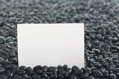 Ακατέργαστα μαύρα φασόλια Στοκ Φωτογραφίες