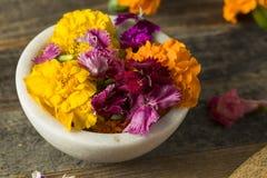 Ακατέργαστα οργανικά εδώδιμα λουλούδια Στοκ Φωτογραφίες