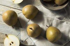 Ακατέργαστα οργανικά καφετιά αχλάδια Angelys Στοκ εικόνα με δικαίωμα ελεύθερης χρήσης