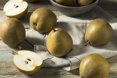 Ακατέργαστα οργανικά καφετιά αχλάδια Angelys Στοκ φωτογραφίες με δικαίωμα ελεύθερης χρήσης
