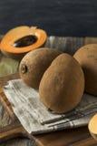 Ακατέργαστα οργανικά καφετιά φρούτα Mamey στοκ εικόνα