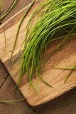 Ακατέργαστα οργανικά πράσινα φρέσκα κρεμμύδια Στοκ εικόνες με δικαίωμα ελεύθερης χρήσης