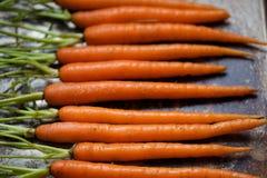 Ακατέργαστα ολόκληρα καρότα μωρών στο φύλλο μπισκότων μετάλλων σε μια σειρά με τους μίσχους Στοκ φωτογραφίες με δικαίωμα ελεύθερης χρήσης