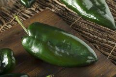 Ακατέργαστα πράσινα οργανικά πιπέρια Poblano Στοκ φωτογραφία με δικαίωμα ελεύθερης χρήσης