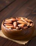 Ακατέργαστα της Χιλής καρύδια πεύκων Pinones Στοκ φωτογραφίες με δικαίωμα ελεύθερης χρήσης