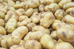 Ακατέργαστα τρόφιμα λαχανικών πατατών στην αγορά για τη σύσταση σχεδίων και το β Στοκ Εικόνες