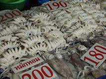 Ακατέργαστα τρόφιμα καλαμαριών Στοκ φωτογραφίες με δικαίωμα ελεύθερης χρήσης