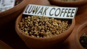 Ακατέργαστα φασόλια του καφέ luwak στο μεγάλο πιάτο αργίλου στον ξύλινο πίνακα Ένα από τα βήματα να προετοιμαστεί του ακριβότερου στοκ εικόνα με δικαίωμα ελεύθερης χρήσης