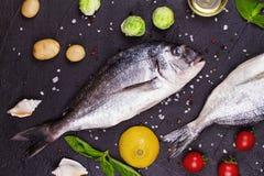 Ακατέργαστα φρέσκα ψάρια dorado με τους νεαρούς βλαστούς των Βρυξελλών, τις ντομάτες, το λεμόνι, τη νέα πατάτα και τα πράσινα Στοκ φωτογραφία με δικαίωμα ελεύθερης χρήσης