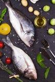 Ακατέργαστα φρέσκα ψάρια dorado με τους νεαρούς βλαστούς των Βρυξελλών, τις ντομάτες, το λεμόνι, τη νέα πατάτα και τα πράσινα Στοκ Εικόνα