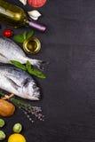 Ακατέργαστα φρέσκα ψάρια dorado Στοκ φωτογραφίες με δικαίωμα ελεύθερης χρήσης