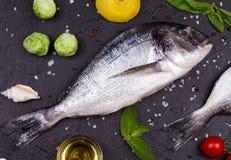 Ακατέργαστα φρέσκα ψάρια dorado Στοκ φωτογραφία με δικαίωμα ελεύθερης χρήσης
