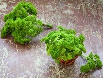 Ακατέργαστα φύλλα μαϊντανού Στοκ Εικόνες