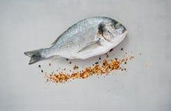 Ακατέργαστα ψάρια και καρυκεύματα Στοκ Εικόνες