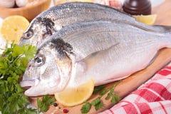 Ακατέργαστα ψάρια και συστατικό στοκ εικόνες με δικαίωμα ελεύθερης χρήσης