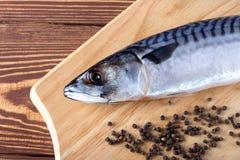 Ακατέργαστα ψάρια με τα καρυκεύματα στον ξύλινο πίνακα Στοκ Φωτογραφία