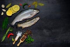 Ακατέργαστα ψάρια πεστροφών και μαγειρεύοντας συστατικά με τη διαστημική περιοχή αντιγράφων Στοκ Εικόνες
