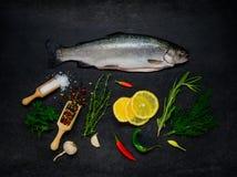 Ακατέργαστα ψάρια πεστροφών και μαγειρεύοντας συστατικά Στοκ Εικόνες