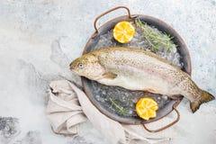 Ακατέργαστα ψάρια πεστροφών στοκ φωτογραφία με δικαίωμα ελεύθερης χρήσης