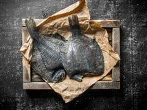 Ακατέργαστα ψάρια σε έναν δίσκο με το έγγραφο στοκ εικόνες με δικαίωμα ελεύθερης χρήσης