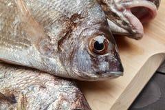 Ακατέργαστα ψάρια στον ξύλινο τέμνοντα πίνακα Στοκ Φωτογραφίες