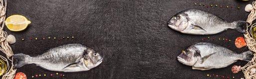 Ακατέργαστα ψάρια dorado με το δίχτυ του ψαρέματος, το λεμόνι και το πιπέρι στο μαύρο υπόβαθρο πετρών, έμβλημα Στοκ Εικόνες