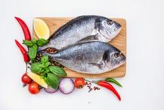 Ακατέργαστα ψάρια dorado στο κίτρινο πιάτο με peppercorns στον άσπρο πίνακα, διάστημα αντιγράφων Στοκ εικόνες με δικαίωμα ελεύθερης χρήσης