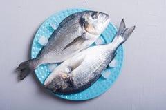 Ακατέργαστα ψάρια dorado στο πιάτο με τον πάγο στοκ φωτογραφία με δικαίωμα ελεύθερης χρήσης