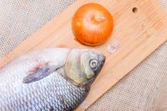 Ακατέργαστα ψάρια IDE σε έναν τεμαχίζοντας πίνακα Στοκ φωτογραφία με δικαίωμα ελεύθερης χρήσης